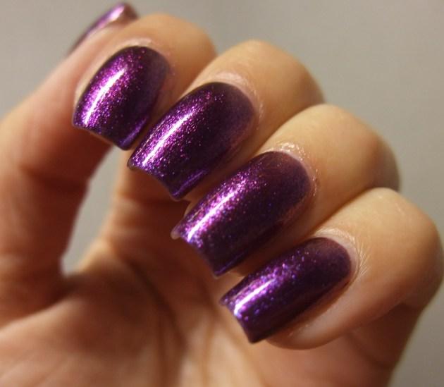Glitter Gal - Wild Violets Brilliant 08