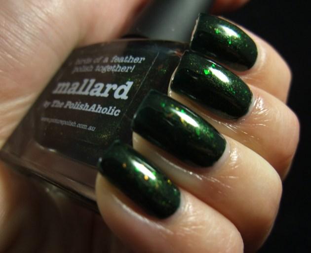 piCture pOlish - Mallard 01